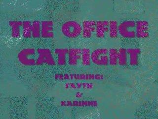 offica cat fight
