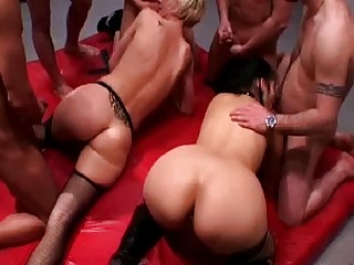 two taut bottom woman into fishnet pantyhose