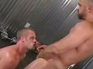 gay tough