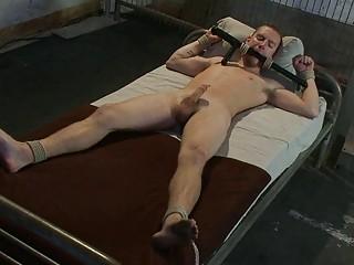 bound prisoner takes a handjob