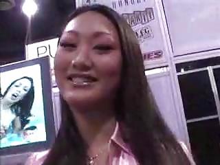 avn expo montage eastern  celebrities 2007