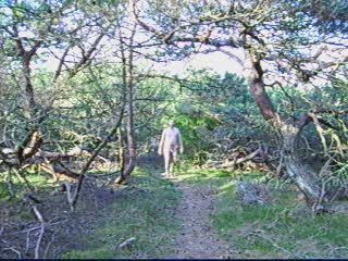 walking into the woods